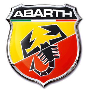 ABARTH DTM GENESIS MOTORSPORT YELLOW COILS